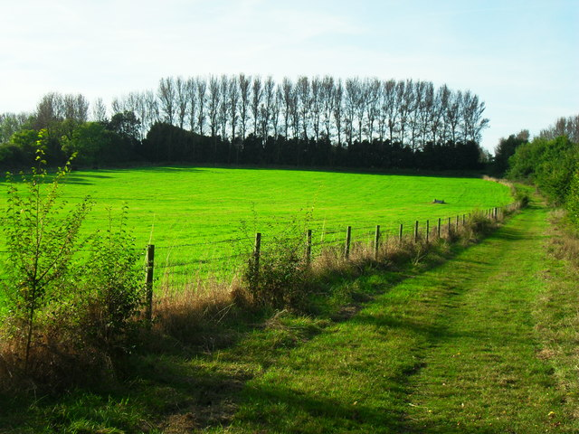 Fairchild's Meadow, Haddenham
