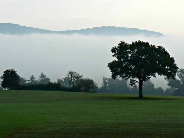 Misty morning, Holme Lacy, Herefordshire