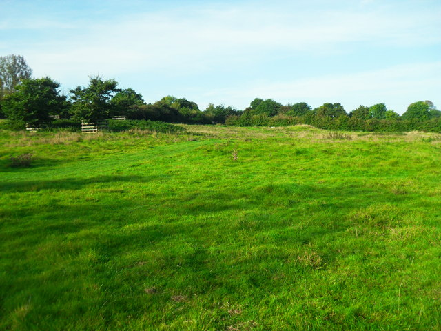 Pond Field, Haddenham