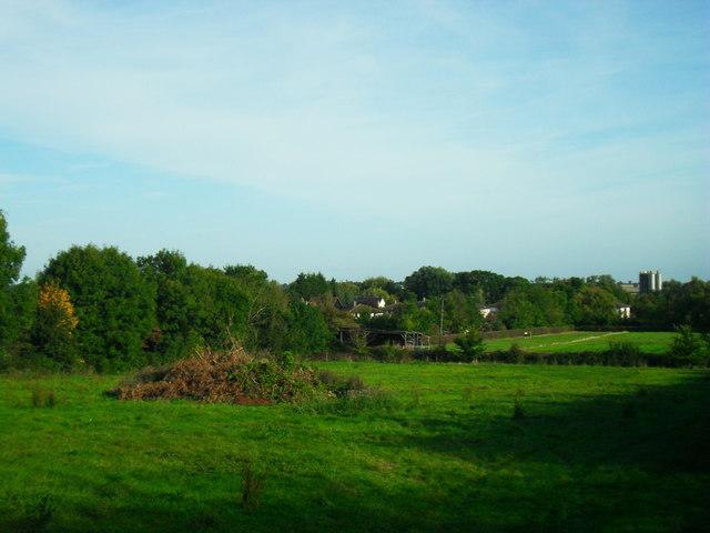 Bonfire field, Haddenham