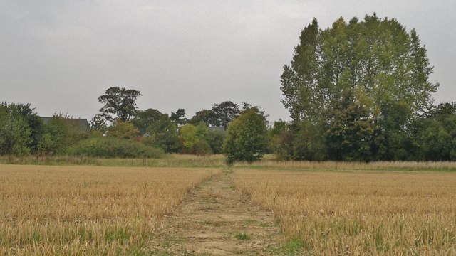 Path through harvested wheat field near Dunholme