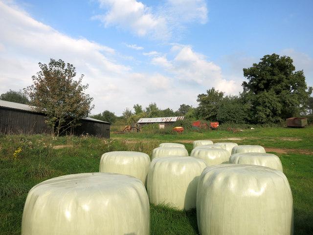 Big Bales at Swanworth Farm