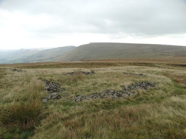 Old sheepfold on Colborne Moor