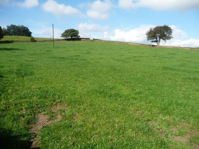 Farmland north of Sconce Lane