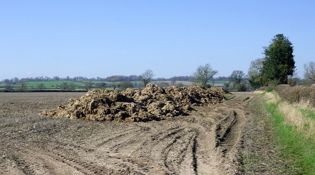 Manure heap north of Worfield, Shropshire