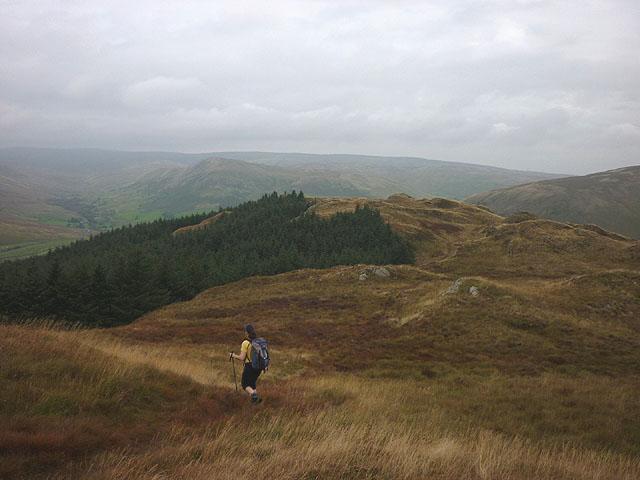 Heading north on Ashstead Fell