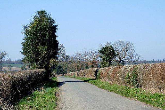 The lane to Hartlebury north of Worfield, Shropshire