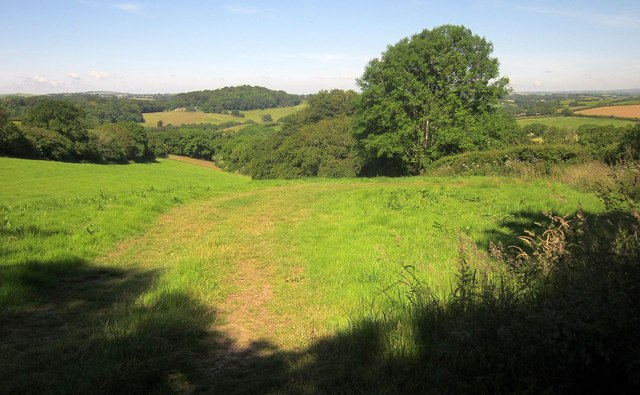 Field at St Erney
