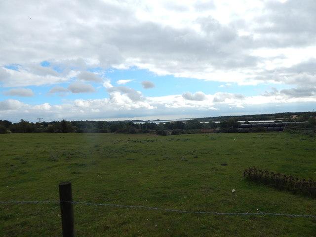 Field near Ballast Quay Road