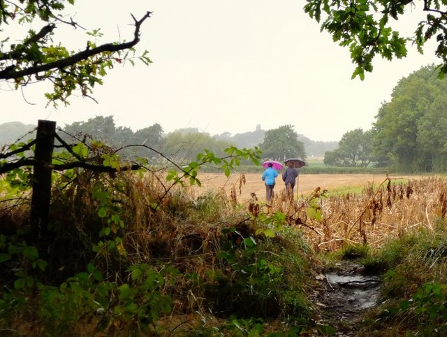 Walkers on path near twelve yarder, Rainford Road, Billinge