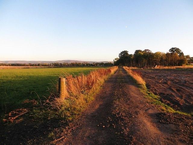 Farm road, Hodges