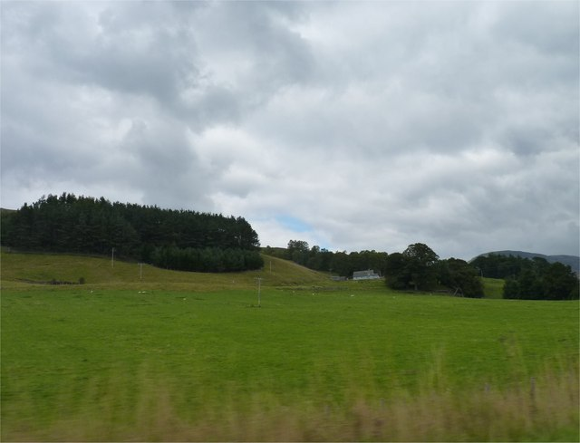 Plantation and house