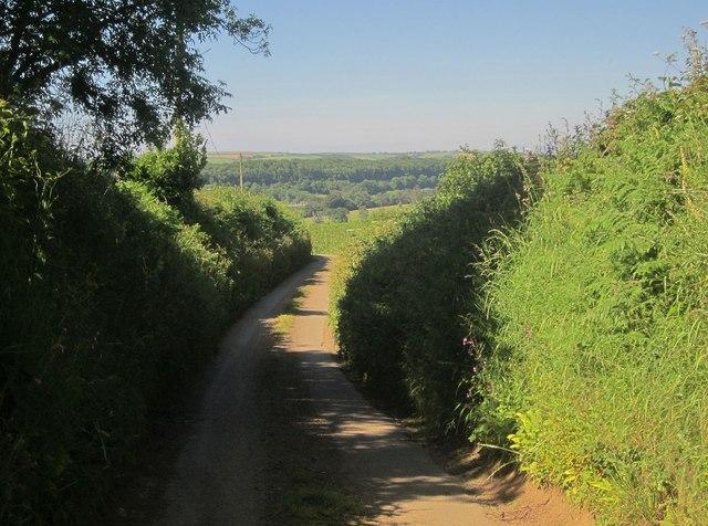 Lane to Markwell