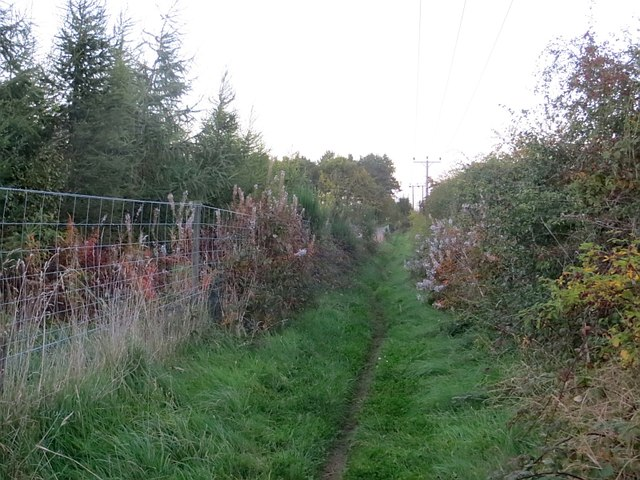 Path, New Winton