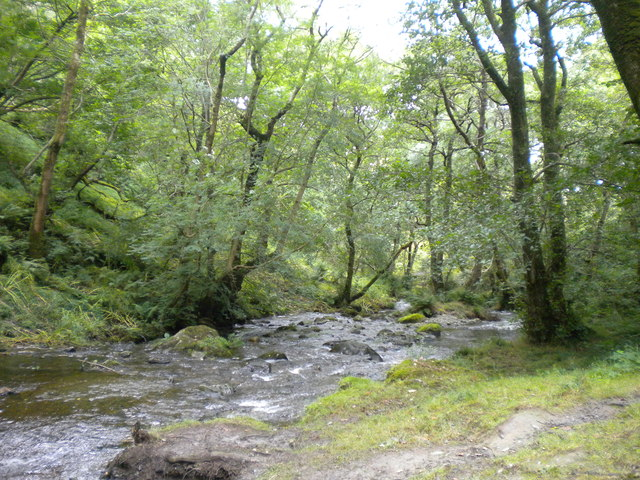 River above Lower Falls, Dolgoch