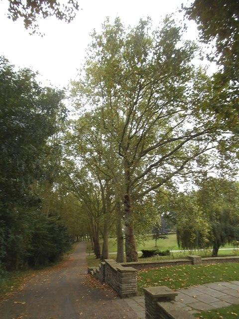 Path on Gladstone Park