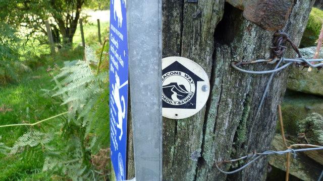 On the Beacons Way near Crug Hywel