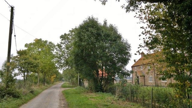 Ashlin Lane