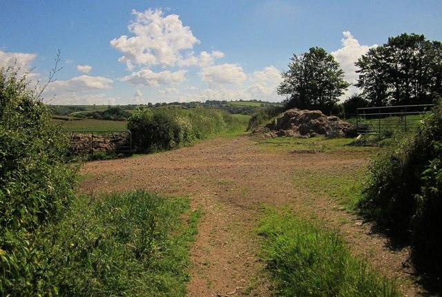 Farm tracks, Markwell Lane