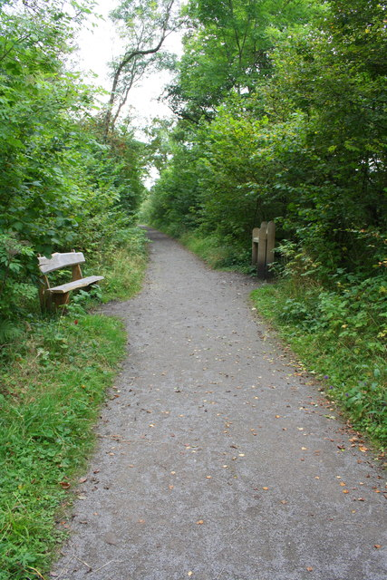 Footpath on dismantled railway trackbed through Demesne Wood