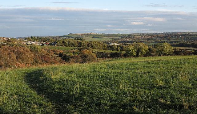 Path crossing field