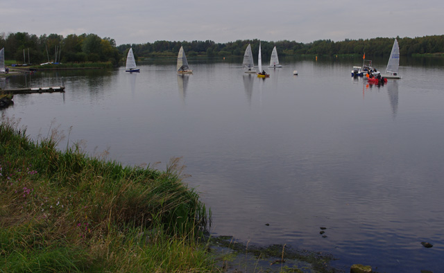 Pennington Flash