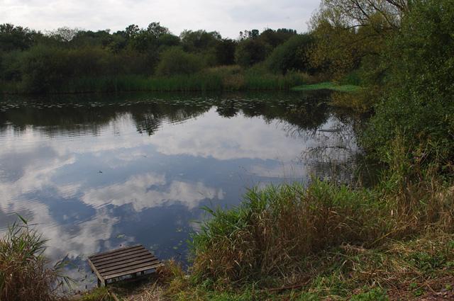 Pond, south of Pennington Flash