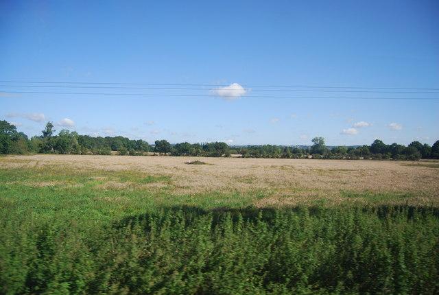 Rough grazing near Staplehurst