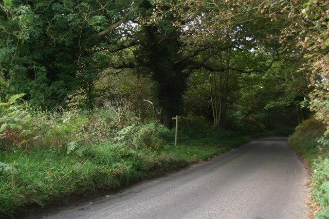 Footpath to Kelling Heath Park Station crossing Holgate Hill