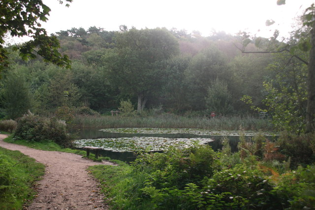 Pond near Kelling Heath Park Station