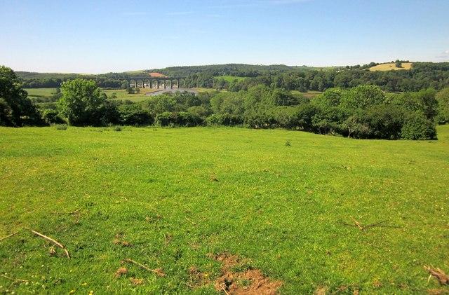 Pasture, Markwell