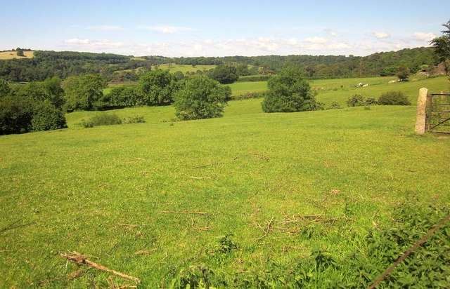 Pasture land at Markwell
