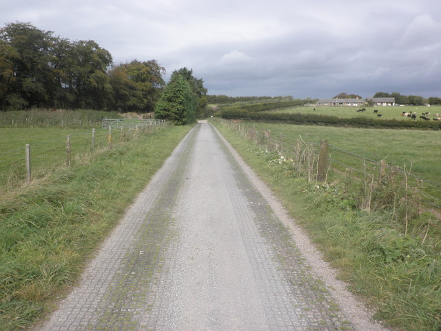 Access road from Tripp Farm