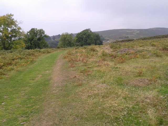 Offa's Dyke path heading north from the hill fort