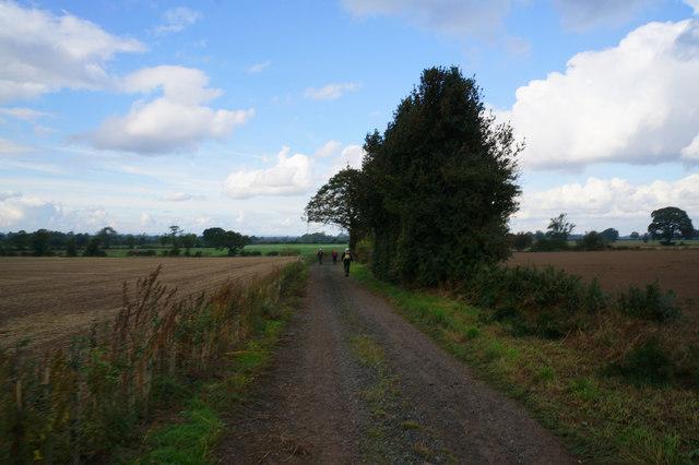 Rice Lane towards Myton-on-Swale