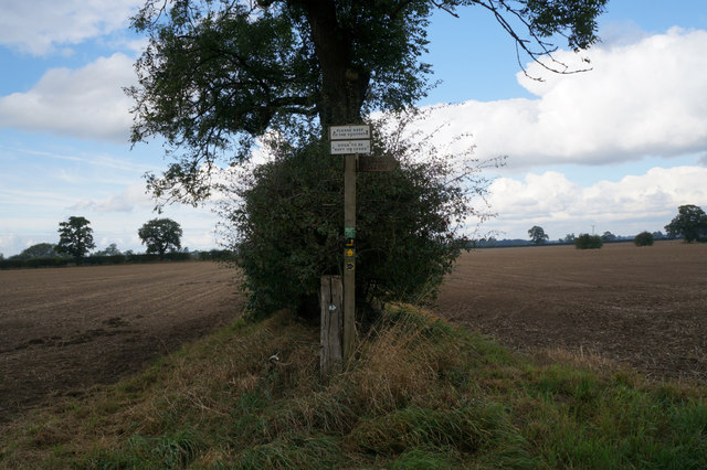 Finger post on Haddocks Lane