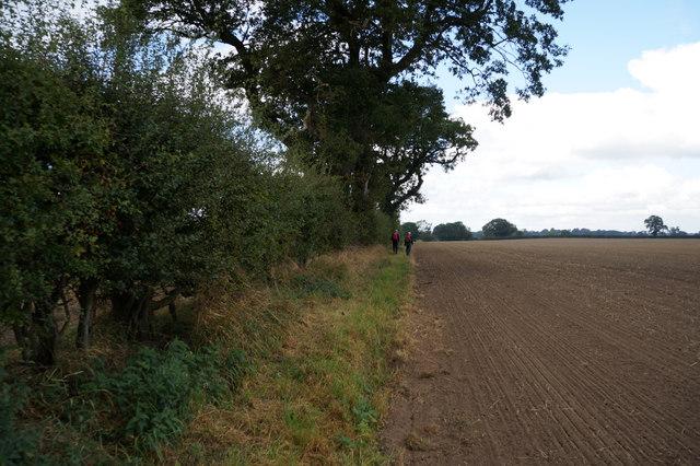 Path leading to Moor Lane, Myton-on-Swale