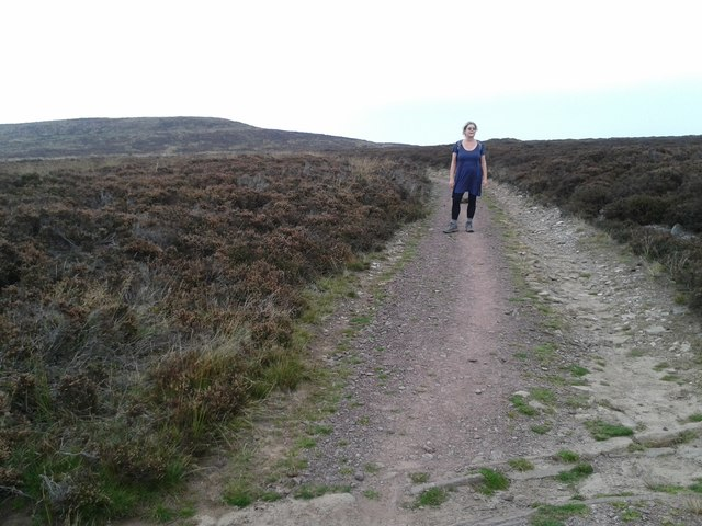 Walker on the Offa's Dyke path
