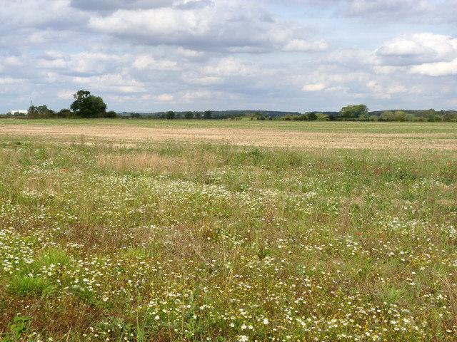Site of Segelocum