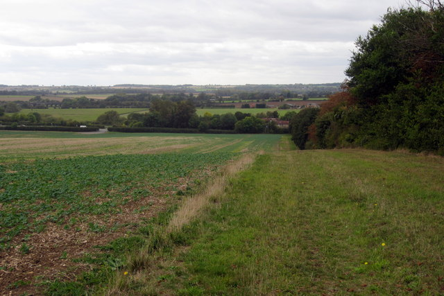 Bridleway to the Bedford Road by the Long Spinney