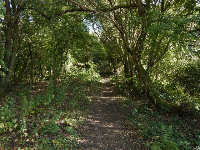Path on dismantled railway line