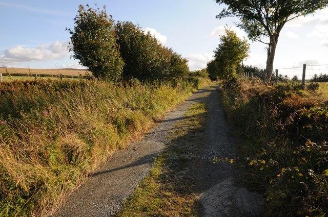 Track to Rhos Bryn-llwyn