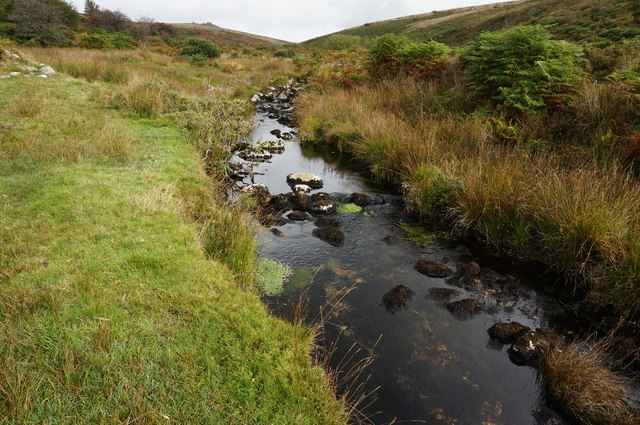 The River Meavy