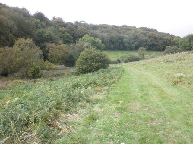 Bridleway to Stolford