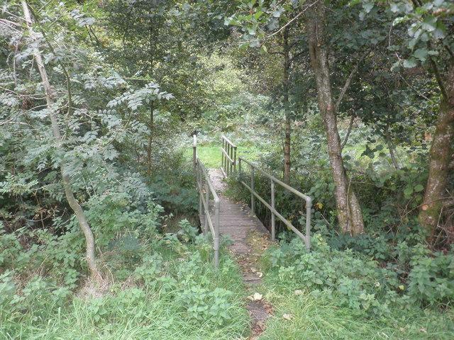 Footbridge in Northern Wood