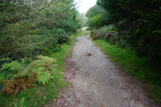 Bridleway to the open moor