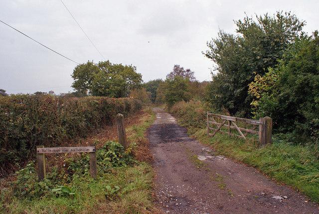 Track onto Wetley Moor