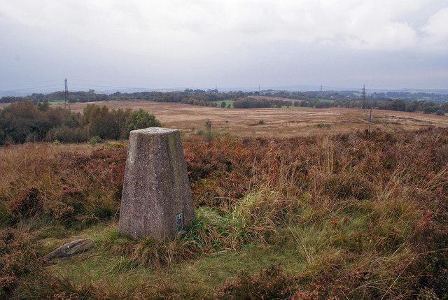 Wetley Moor trig point