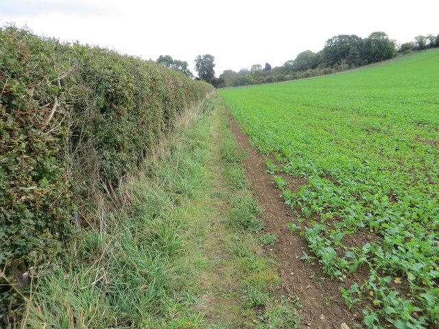 Field-side Path