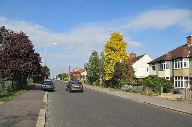 Early autumn in Coleridge Road